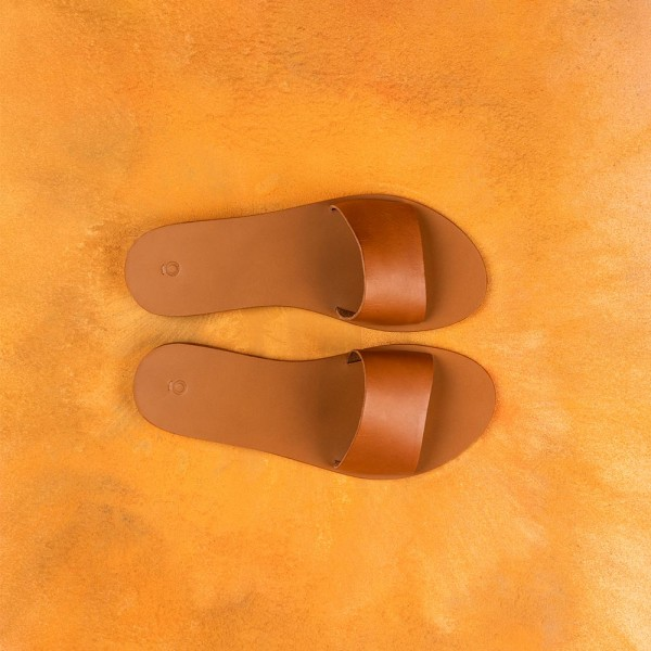 The Slides Brown